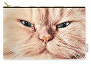 Cat Face Close Up Portrait Carry-all Pouch