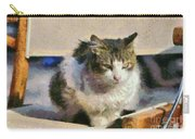Cat On Chair Carry-all Pouch
