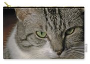 Catitude Carry-all Pouch