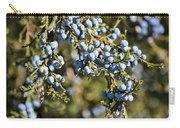 Cedar Blue Carry-all Pouch