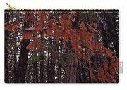 Cedar Carry-all Pouch