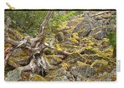 Cheakamus Rainforest Debris Carry-all Pouch