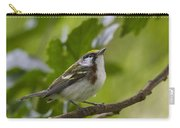 Chesnutsided Warbler Carry-all Pouch