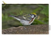 Chestnut-sided Warbler Carry-all Pouch