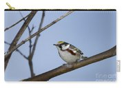 Chestnut Warbler Carry-all Pouch