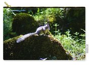 Chipmunk In The Sun Carry-all Pouch