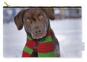 Chocolate Labrador Retriever Carry-all Pouch