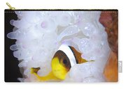 Clarks Anemonefish In White Anemone Carry-all Pouch by Steve Jones