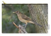 Clay-colored Thrush Carry-all Pouch
