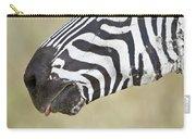 Close-up Of A Burchells Zebra Equus Carry-all Pouch