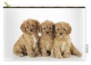 Cockapoo Puppy Dogs Carry-all Pouch