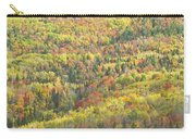 Colorful Autumn Forest In Mount Blue State Park Weld Maine Carry-all Pouch