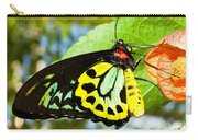 Common Birdwing Butterfly Carry-all Pouch