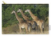 Common Giraffe Carry-all Pouch