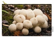 Common Puffball Mushrooms Lycoperdon Perlatum Carry-all Pouch