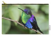Crowned Woodnymph Hummingbird Male Carry-all Pouch