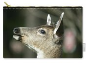 Deer Sunshine Profile Carry-all Pouch