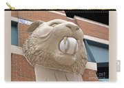 Detroit Tiger Baseball Carry-all Pouch