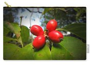 Dogwood Berries Carry-all Pouch