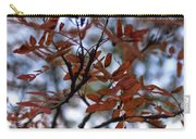 Early Fall Of Rowan Carry-all Pouch