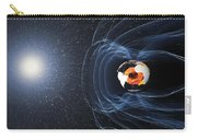 Earths Magnetic Field Carry-all Pouch