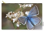 Eastern Baton Blue  Carry-all Pouch