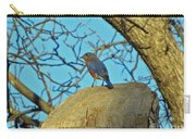Eastern Bluebird 3 Carry-all Pouch