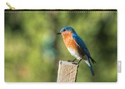 Eastern Bluebird Carry-all Pouch