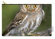 Elf Owl Carry-all Pouch