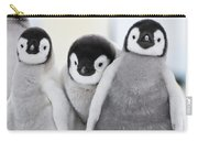 Emperor Penguin Chicks Carry-all Pouch