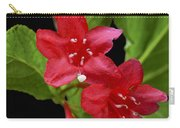 Flowers Isolated On Black Background Carry-all Pouch