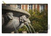 Fountain - Place Des Vosges Carry-all Pouch