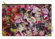 Frost On Autumn Tundra Carry-all Pouch