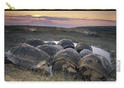 Galapagos Giant Tortoise Wallowing Carry-all Pouch