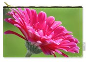 Gerbera Daisy Named Raspberry Picobello Carry-all Pouch