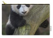 Giant Panda Cub In Tree Carry-all Pouch