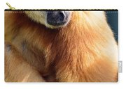 Gibbon Monkey  Carry-all Pouch
