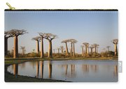 Grandidiers Baobabs Madagascar Carry-all Pouch