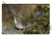 Gray-cheeked Thrush Carry-all Pouch