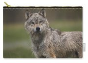 Gray Wolf  North America Carry-all Pouch