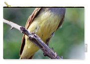 Great Crested Flycatcher With Captured Carry-all Pouch
