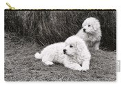 Great Pyramise Pups Carry-all Pouch