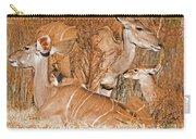 Greater Kudu Mother And Baby Carry-all Pouch