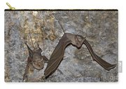 Greater Mouse-tailed Bat Rhinopoma Microphyllum Carry-all Pouch