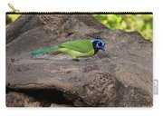 Green Jay Carry-all Pouch
