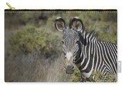 Grevys Zebra Stallion Carry-all Pouch