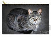 Grey Cat Portrait Carry-all Pouch