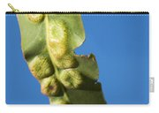 Gum Leaf Galls Carry-all Pouch