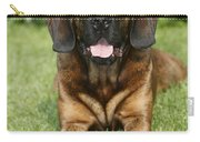Hanover Hound Carry-all Pouch