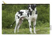 Harlequin Great Dane Carry-all Pouch